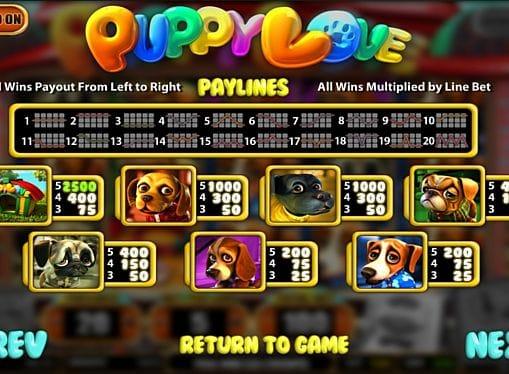 Таблица выплат и правила в игре Puppy Love онлайн