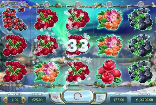 Призовая комбинация из ягод в Winter Berries